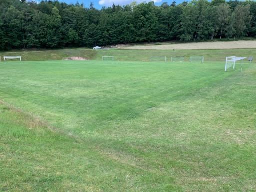gepflegter grüner Rasenplatz
